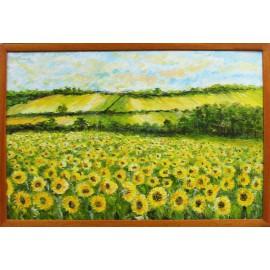 Obraz-originálny ručne maľovaný-Slnečnicové pole