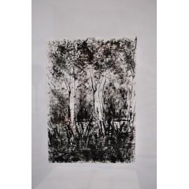 Obraz - Ticho lesa