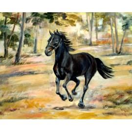 Mária Lenárdová - Cválajúci koník
