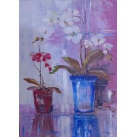 Gregory Goy - Orchidey